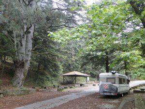 Nous prenons plaisir à nous retrouver seul au monde avec les montagnes et les arbres centenaires comme seules voisins.